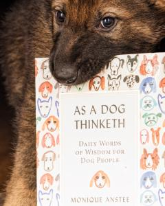 Dog Training books, dog philosophy, understanding dogs, dog books